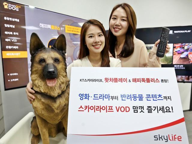 KT스카이라이프, OTT 라인업 확대...왓챠플레이, 해피독플러스 VOD 서비스 론칭