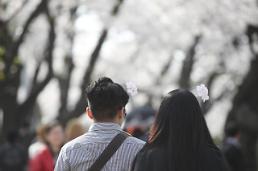 .樱花树下的恋人.