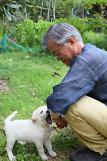 .[FOCUS] President Moon under pressure from activists to ban dog meat  .