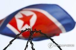 .S. Korea close to developing blackout bomb: Yonhap.