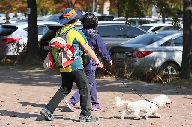 韩国拟修改《动物保护法》 恶犬伤人将追究犬主刑责
