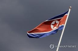 . N.K. apparently replaces all guards in truce village: Yonhap.