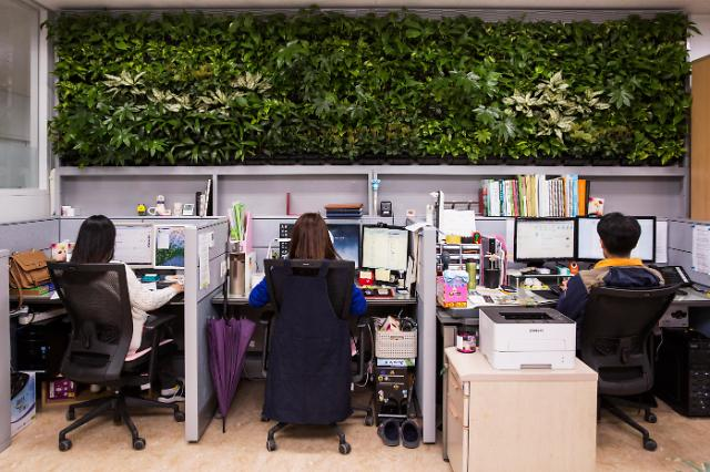 문 닫고 식물 키우자…미세먼지 70% 줄이는 '으뜸 식물'