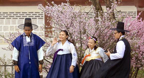去年来韩首尔游客减少 明洞仍是首选