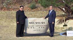 [SUMMIT] Two Korean leaders plant commemorative tree to mark historic summit