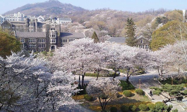 挤破头也要进!!这所高校平均学费910万韩元韩国第一贵