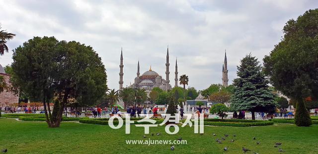 터키항공 레이오버 승객, 이스탄불 여행을 무료로?