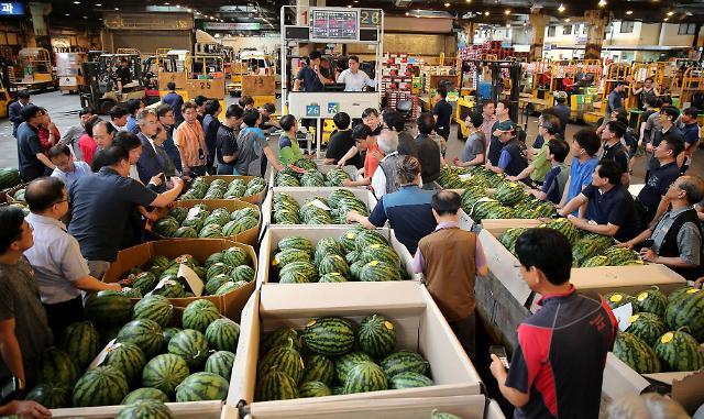 """一颗西瓜160块 在韩国吃西瓜消暑成""""贵族享受"""""""