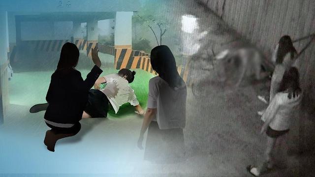 """韩小初高5万学生""""遭受过校园暴力"""" 比去年增加1.3万人"""