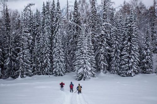 蔚州山地电影节开幕在即 首次上映中国滑雪发祥地纪录片