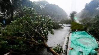 [중국포토] 필리핀 휩쓴 태풍 '망쿳', 中 상륙...유리창 깨지고 가로수 '휘청'