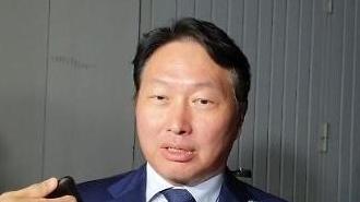 [영상] 최태원 SK 회장이 북한 다녀와서 한 말은