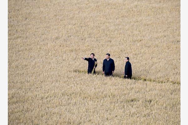 [중국포토] '수확'의 중추절 맞아 헤이룽장 시찰한 시진핑