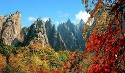 .韩旅行社将发售旅韩外国人朝鲜游产品.