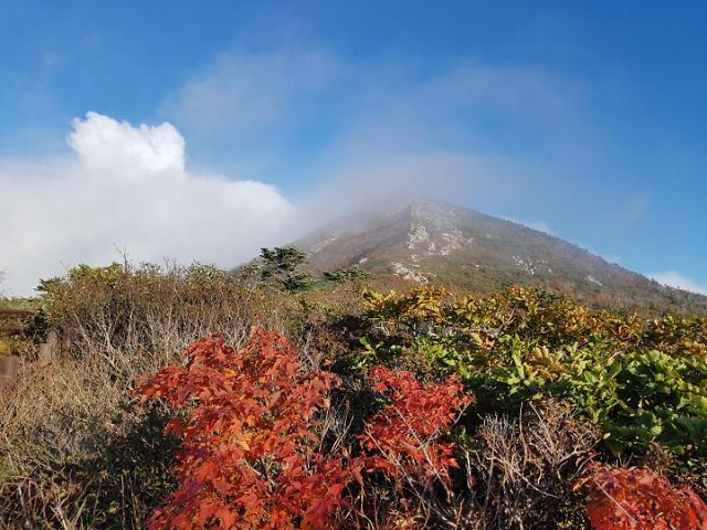 江原道雪岳山霜红雾白