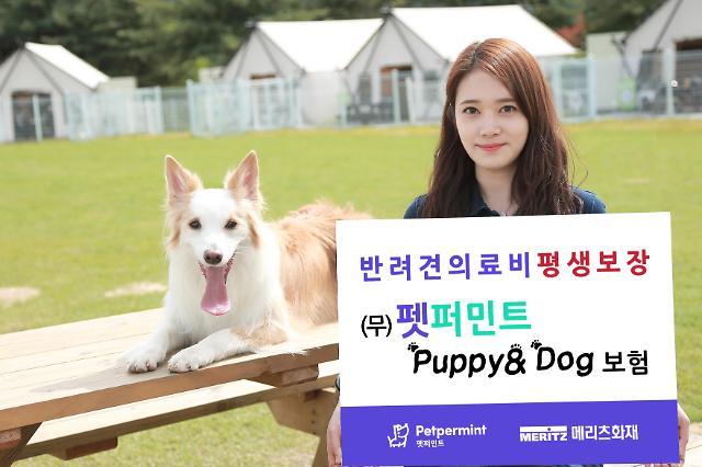 메리츠화재, 반려견 의료비 평생 보장 펫퍼민트 Puppy&Dog보험 출시