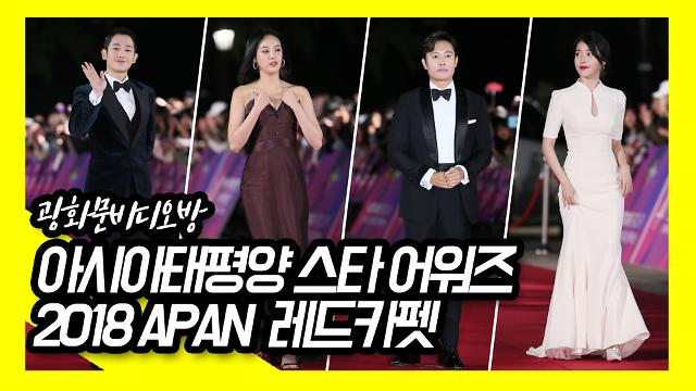 [광화문비디오방] 2018 APAN 아시아태평양 스타 어워즈 레드카펫 현장