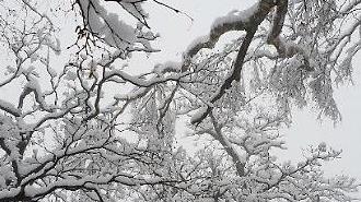 [포토] 겨울왕국으로 변한 설악산