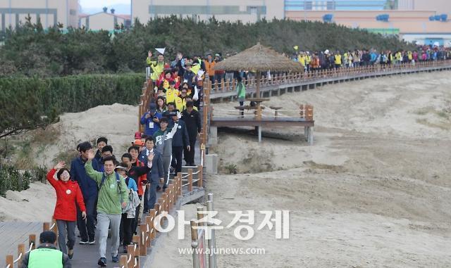 [포항시] 오는 11월 3일 호미반도 해안둘레길 걷기 축제 개최