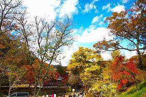 충남 공주, 가을여행주간 맞이 축제 개최