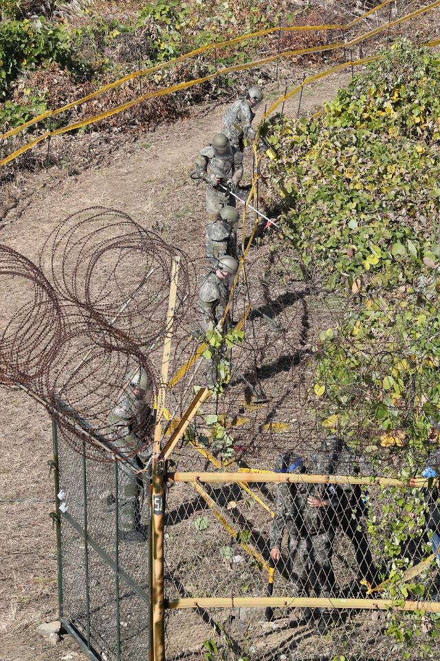 N. Korea removed thousands of mines for excavation of war remains