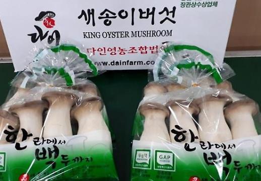 Thành phố Kyungju đạt kỷ lục xuất khẩu 4,5 tấn nấm đùi gà
