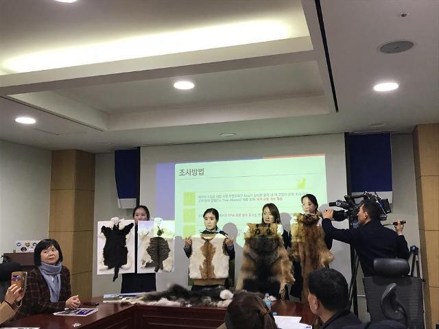 中国出口猫狗毛皮至韩国 韩议员抗议求禁止