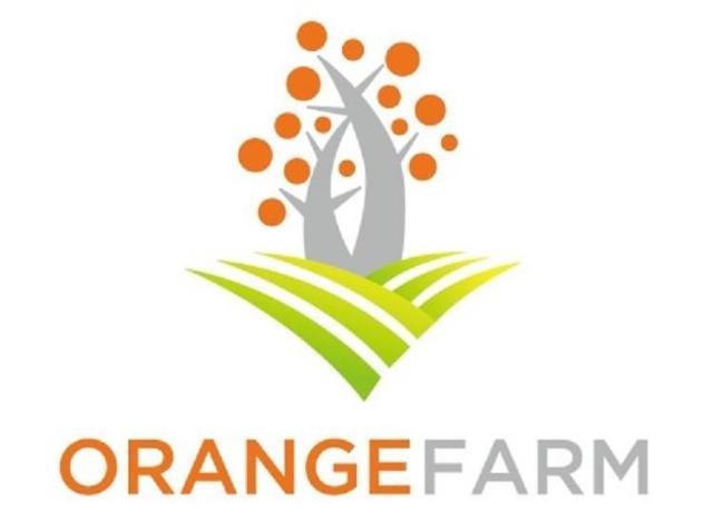 스마일게이트 오렌지팜, 'Orange Camp' 참가 팀 모집