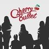 FNCエンター、来年新しいガールズグループ「Cherry Bullet」ローンチ