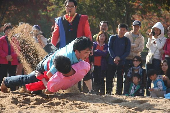 韩朝民俗摔跤共同入选非遗