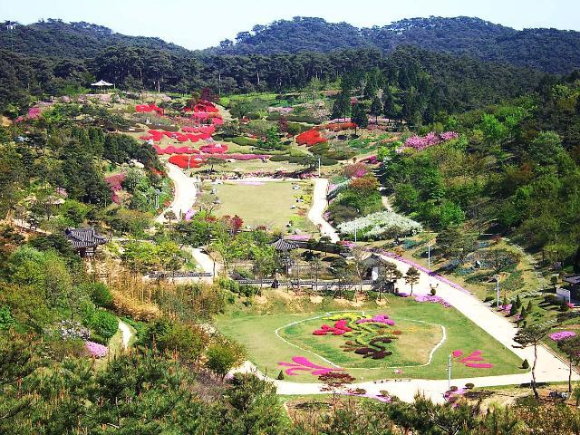 走进忠清南道 领略韩国自然风光