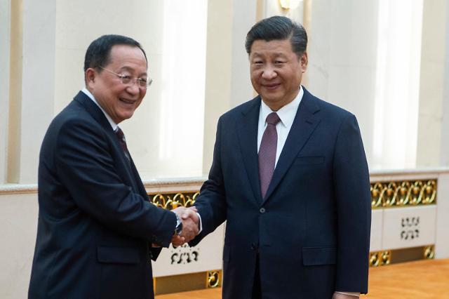 朝鲜外务相李勇浩访华  同习近平王毅举行会谈