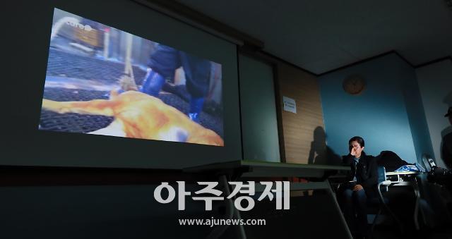 """[포토] 케어 박소연 대표 """"개 도살 때문에 안락사 했다"""""""