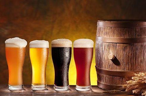 맥주효모, 탈모 예방에 좋다…모발 성분과 유사한 단백질이 모발생성 도와줘