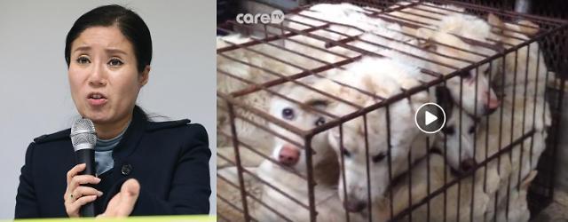 동물 무분별한 안락사 혐의…케어 박소연 대표 출국금지