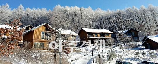 산림복지진흥원, 설 연휴기간 산림치유프로그램 제공