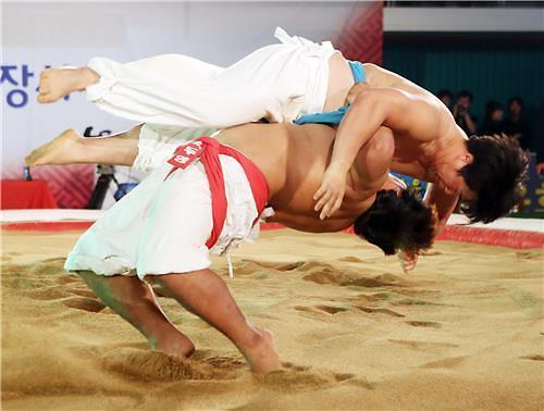 韩朝下周讨论传统摔跤交流合作事宜