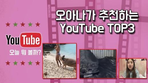 [유튜브TOP3] #야생돼지모델엉덩이 #러시아검은눈 #최준희학교폭력사과