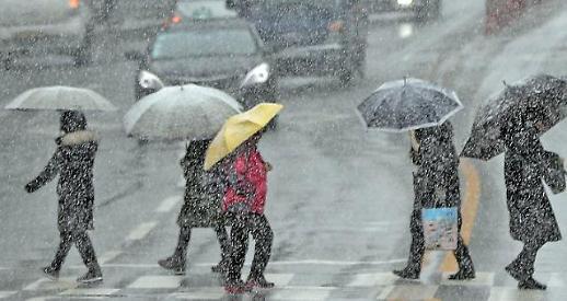 전국 눈, 비에 단독 교통사고 빈번 특약가입은 필수
