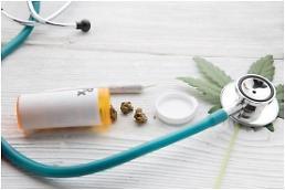 .韩开放大麻类药品禁令 下月起可进口用作治疗.