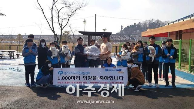 경기도 도우미견나눔센터 입양견 1,000마리 돌파