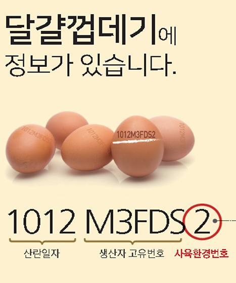 D-3 계란 생산 날짜표시, 농가-소비자 입장 왜 다를까?