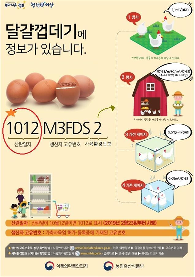 계란, 닭이 낳은 날짜까지 확인된다···안전관리 강화