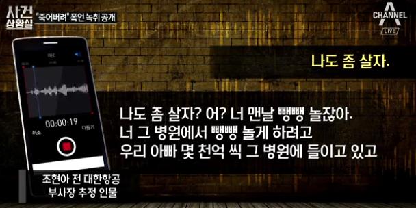 """조현아 동영상 이어 녹취록 등장 """"병원서 놀려고 아빠돈 몇천억이나..."""""""