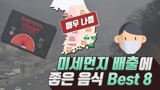 [지금이뉴스] 사상최악의 미세먼지, 신체 배출 최적화 음식 BEST8