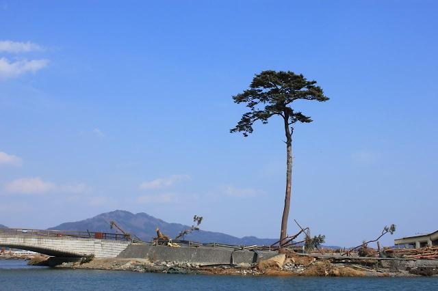 [한준호 칼럼] 동일본 대지진이 스타트업 키운 역설