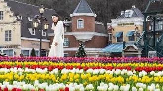Du lịch Hàn Quốc tháng ba: Đến Everland và tham gia Lễ hội hoa Tulip