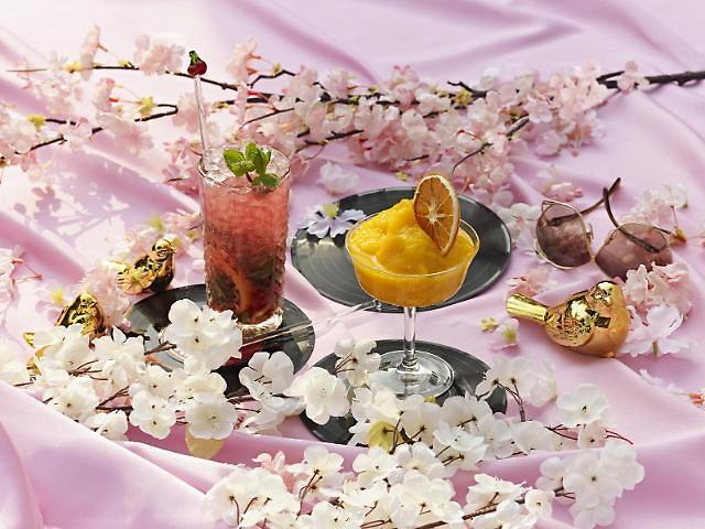 浪漫樱花季即将到来!华克山庄推出室内赏樱项目