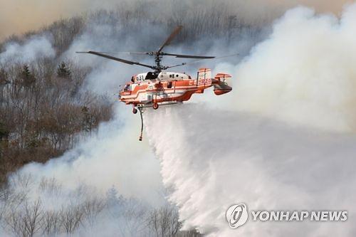"""산림청 """"4월 15일까지 대형산불 특별대책기간"""""""