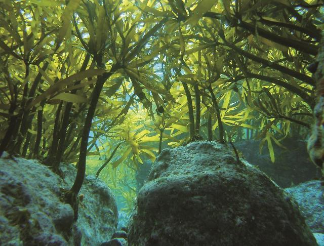 우리나라 해양 비경 10곳 어디?